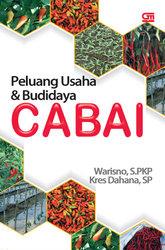 Peluang Usaha dan Budidaya Cabai