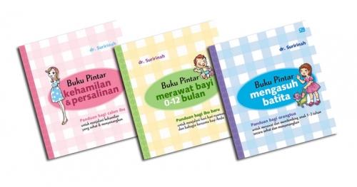Box Set Panduan Lengkap Kehamilan, Persalinan, Merawat Bayi Hingga Mengasuh Batita